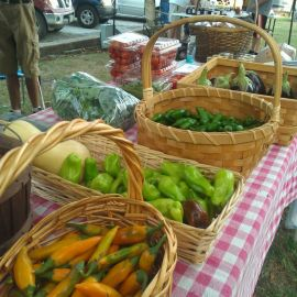 Farmers market near Yellville Arkansas
