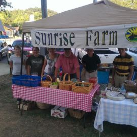 Ozark farmers market near Yellville