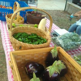Ozark retreat farmers market